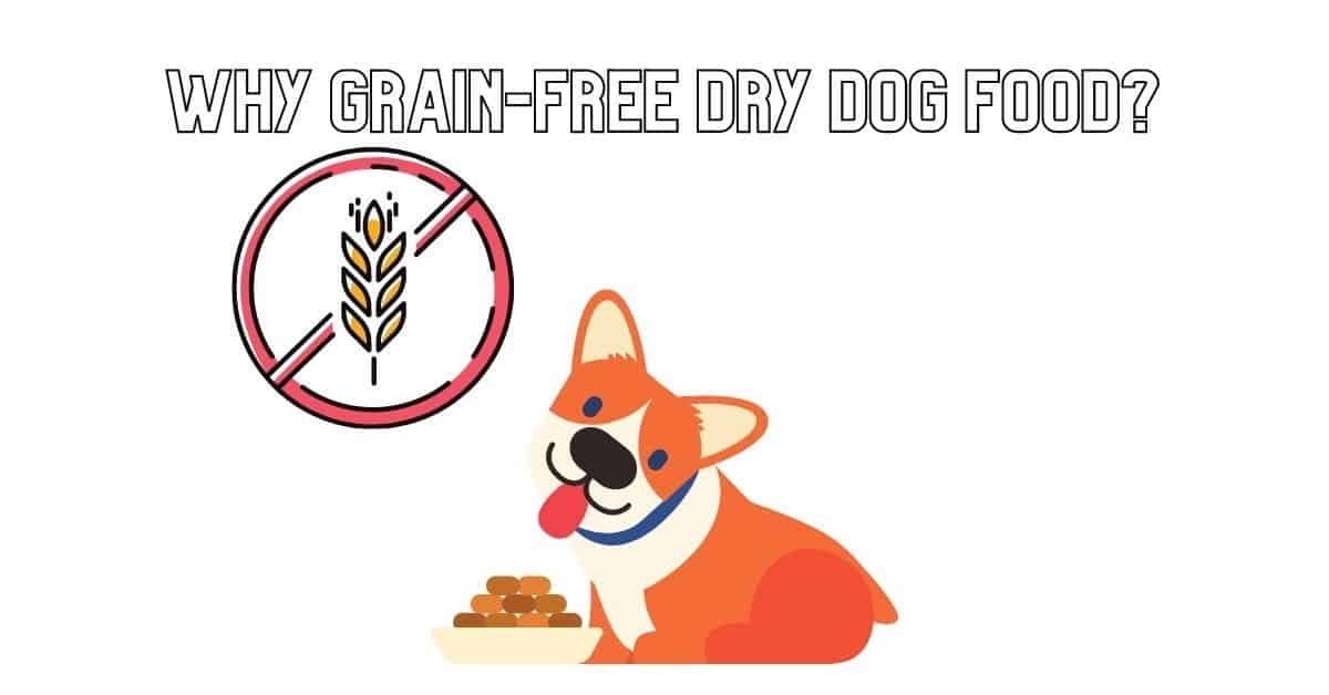 Why Grain-Free Dry Dog Food_