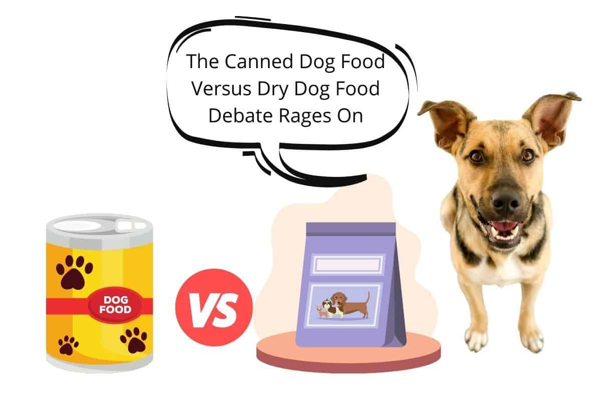 "Speach bubble ""The Canned Dog Food Versus Dry Dog Food Debate Rages On""Canned Dog food VS Kibble"