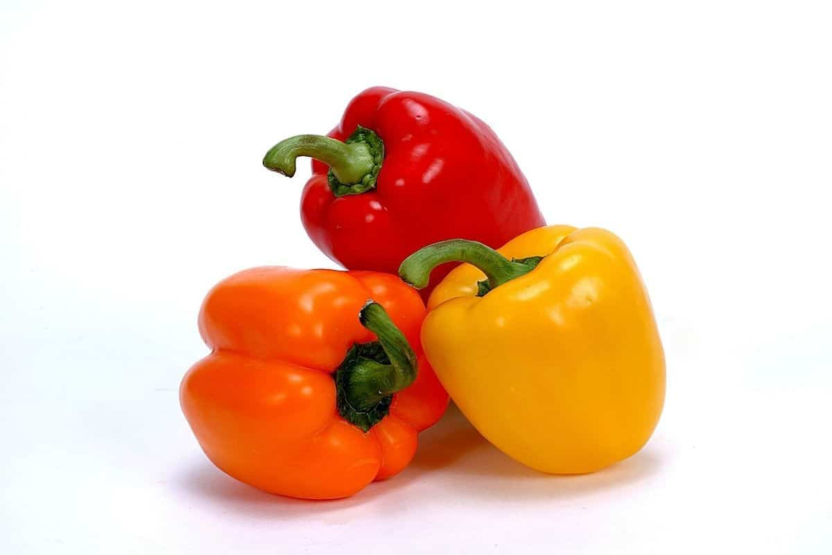 3 bell peppers in different colors red orange and yellow