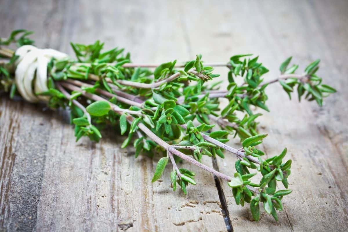 Fresh thyme on wooden table